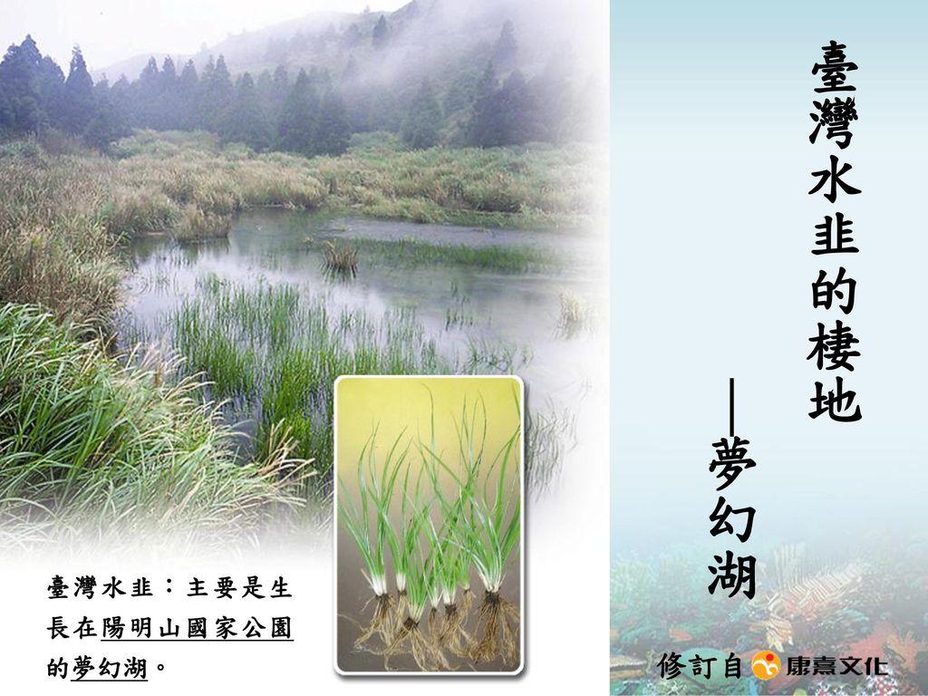 臺灣水韭的棲地 |夢幻湖 臺灣水韭:主要是生長在陽明山國家公園的夢幻湖。