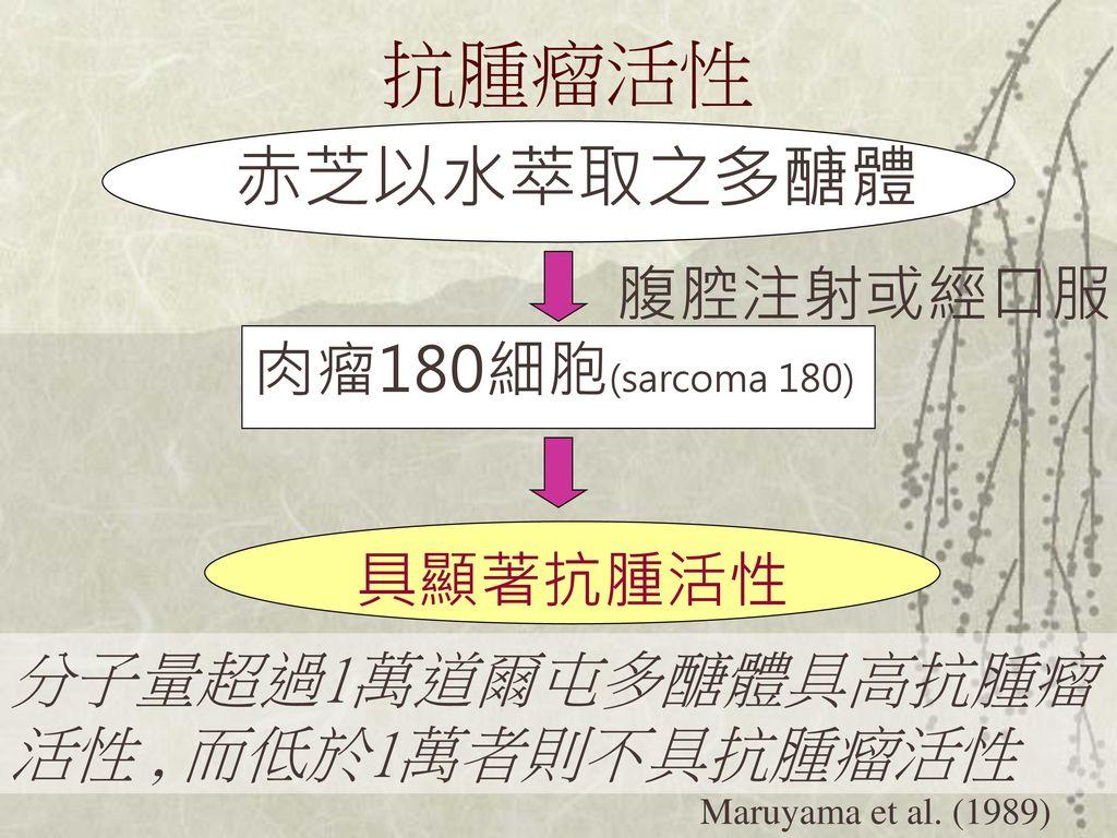 抗腫瘤活性 赤芝以水萃取之多醣體 腹腔注射或經口服 肉瘤180細胞(sarcoma 180) 具顯著抗腫活性