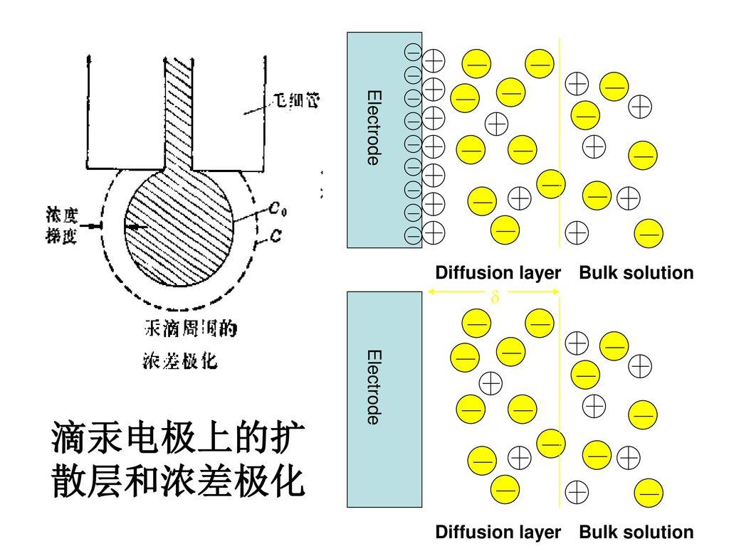 滴汞电极上的扩 散层和浓差极化 Diffusion layer Bulk solution Electrode