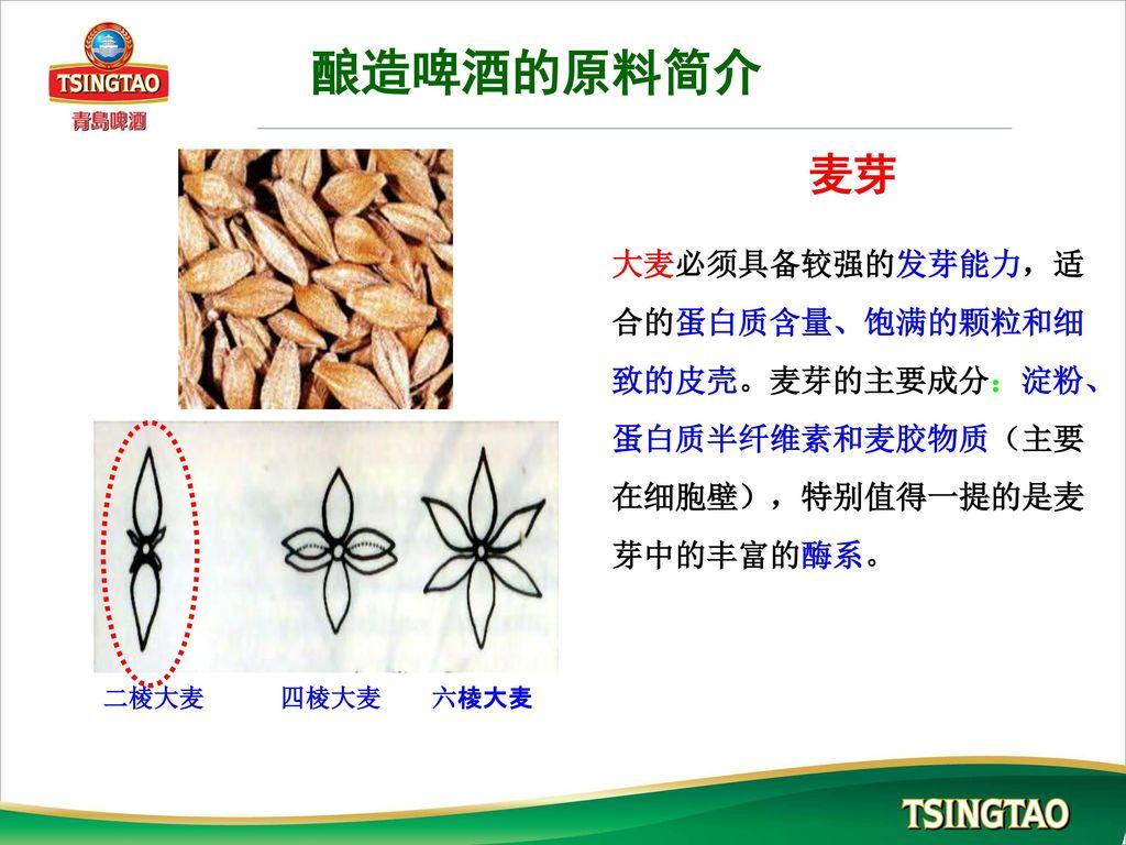 酿造啤酒的原料简介 麦芽. 大麦必须具备较强的发芽能力,适合的蛋白质含量、饱满的颗粒和细致的皮壳。麦芽的主要成分:淀粉、蛋白质半纤维素和麦胶物质(主要在细胞壁),特别值得一提的是麦芽中的丰富的酶系。