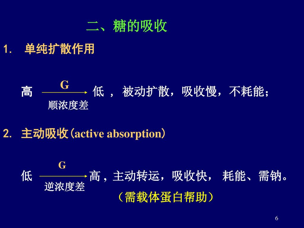 2. 主动吸收(active absorption)