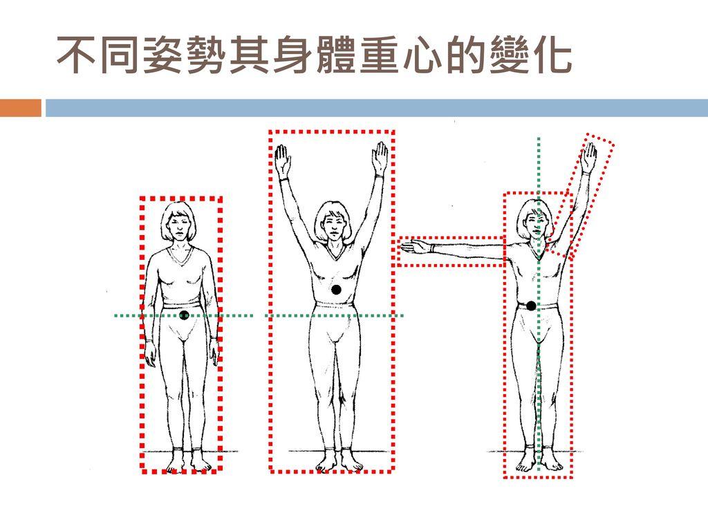不同姿勢其身體重心的變化