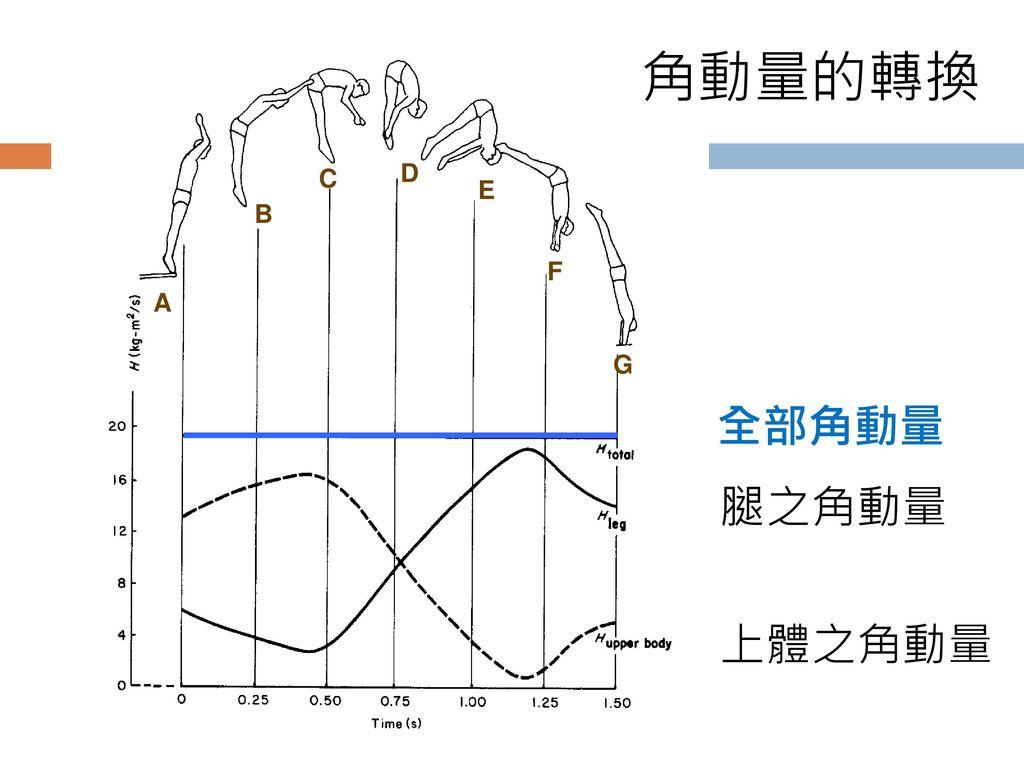 角動量的轉換 C D E B F A G 全部角動量 腿之角動量 上體之角動量