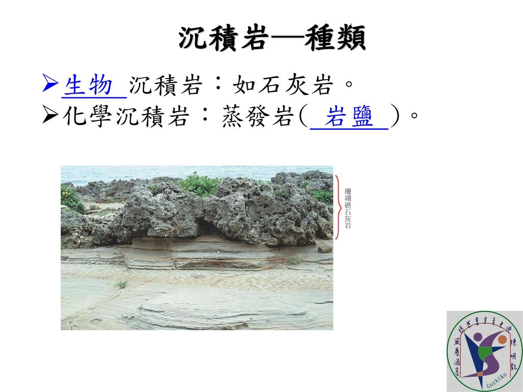 沉積岩─種類 生物 沉積岩:如石灰岩。 化學沉積岩:蒸發岩( 岩鹽 )。