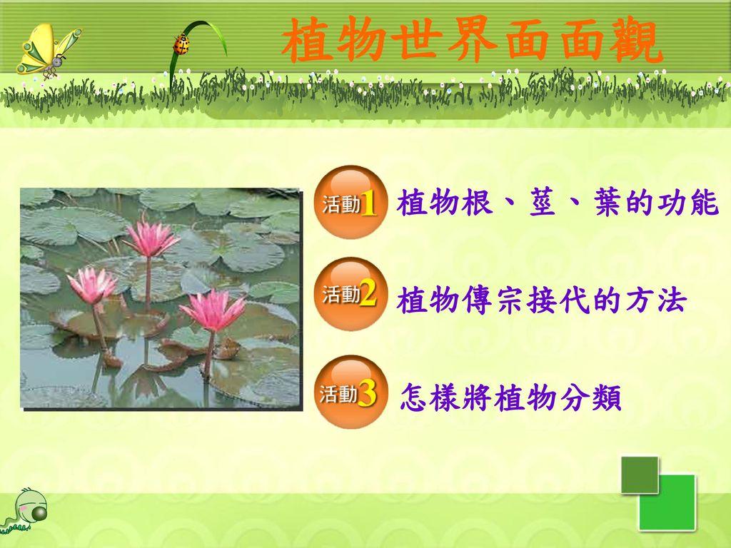 植物世界面面觀 植物根、莖、葉的功能 植物傳宗接代的方法 怎樣將植物分類 2
