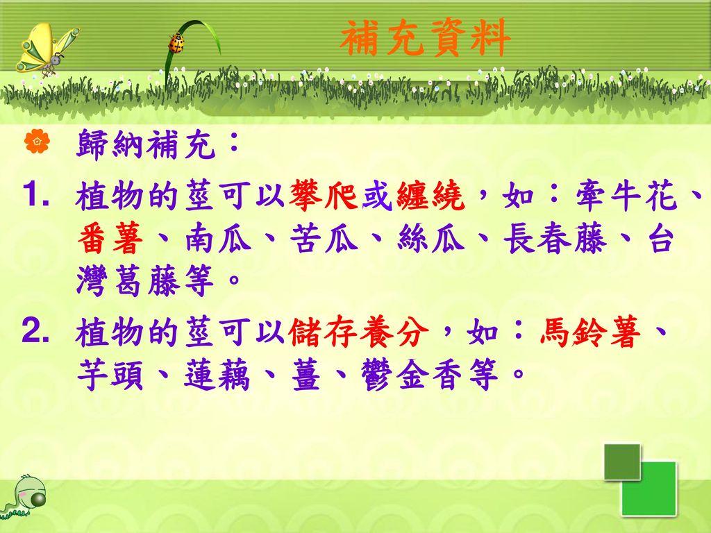 補充資料 歸納補充: 植物的莖可以攀爬或纏繞,如:牽牛花、番薯、南瓜、苦瓜、絲瓜、長春藤、台灣葛藤等。