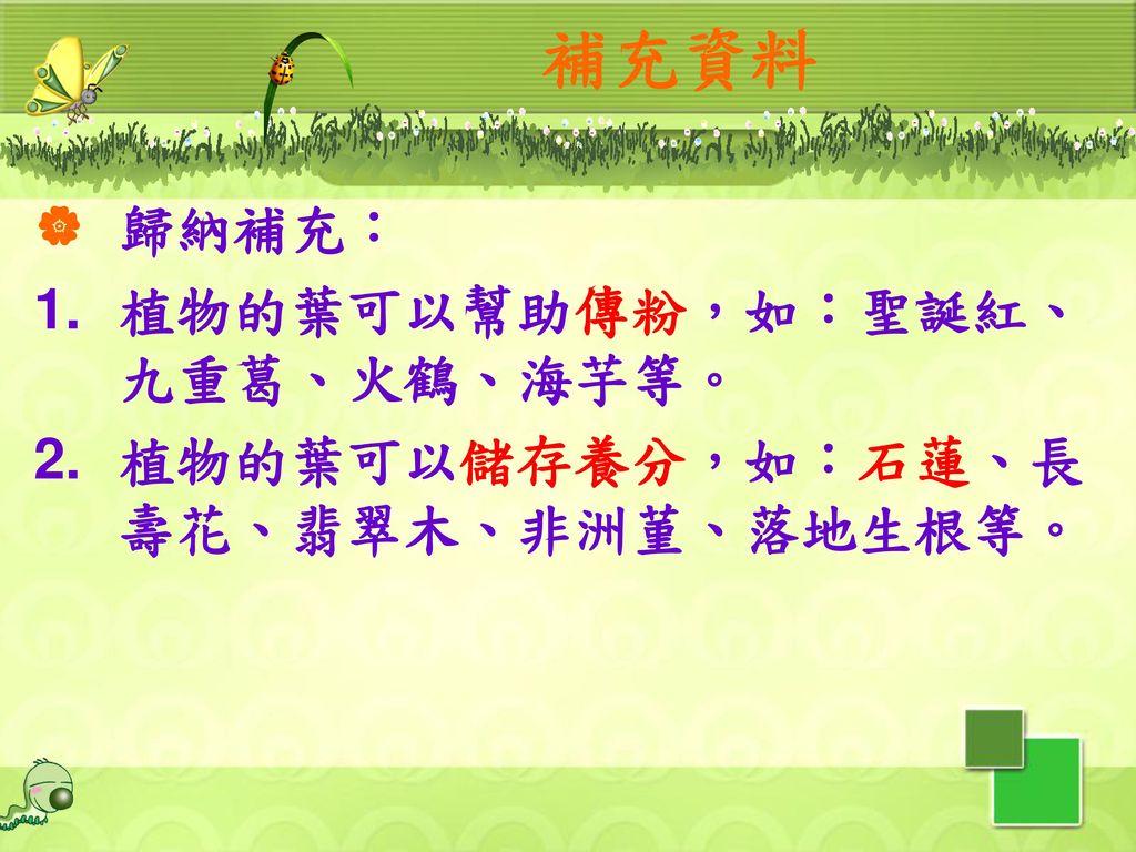 補充資料 歸納補充: 植物的葉可以幫助傳粉,如:聖誕紅、九重葛、火鶴、海芋等。