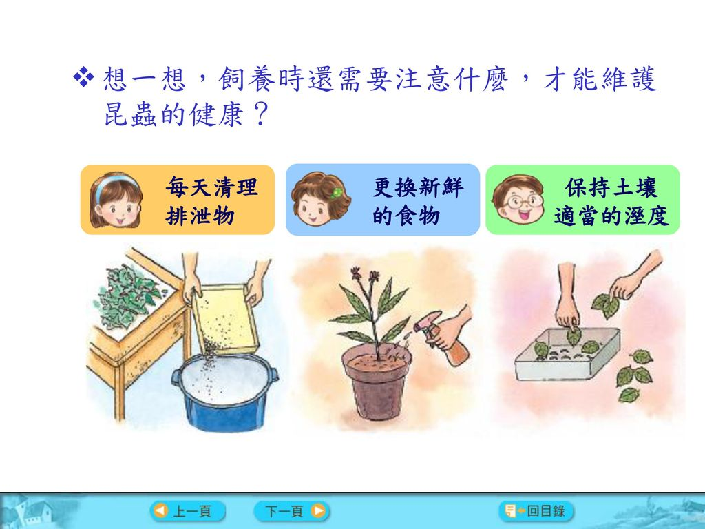 想一想,飼養時還需要注意什麼,才能維護昆蟲的健康?