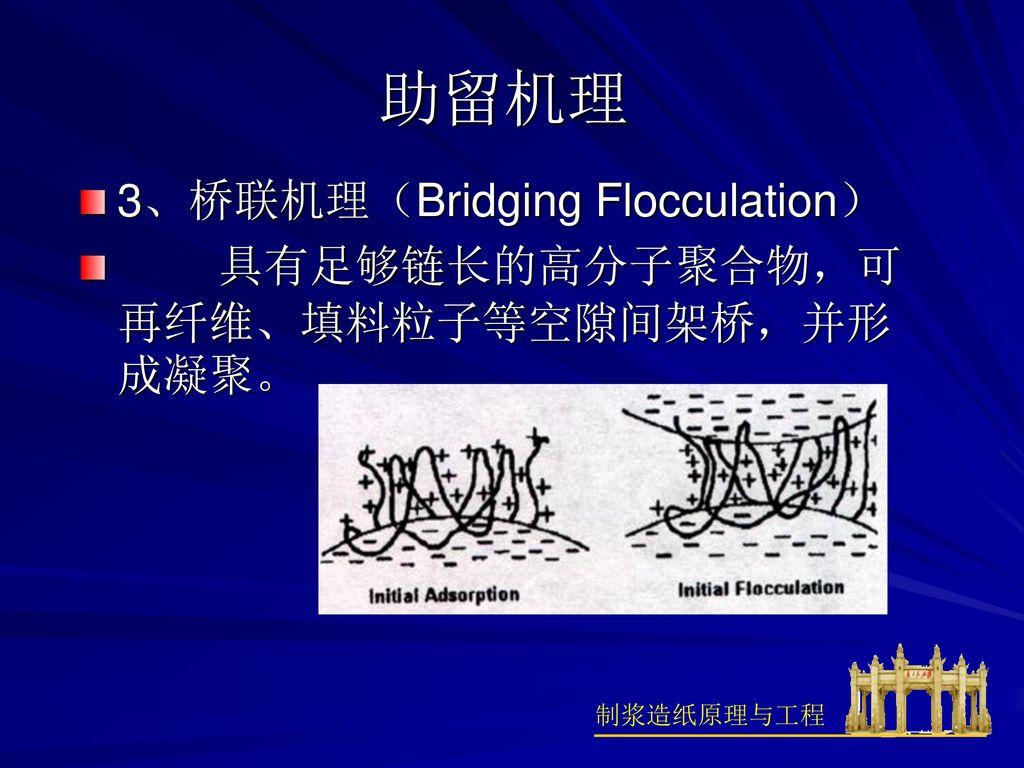 助留机理 3、桥联机理(Bridging Flocculation)