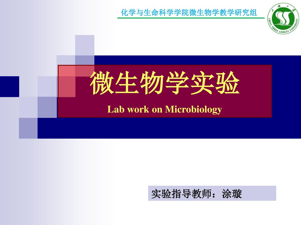 Lab work on Microbiology