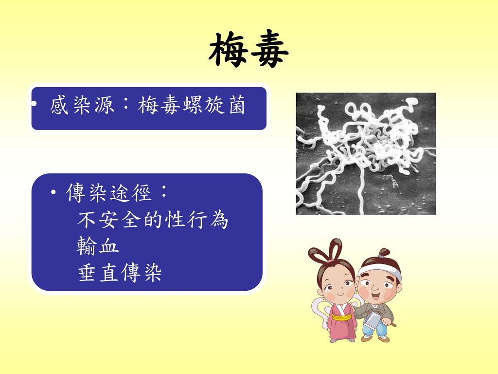 梅毒 感染源:梅毒螺旋菌 傳染途徑: 不安全的性行為 輸血 垂直傳染