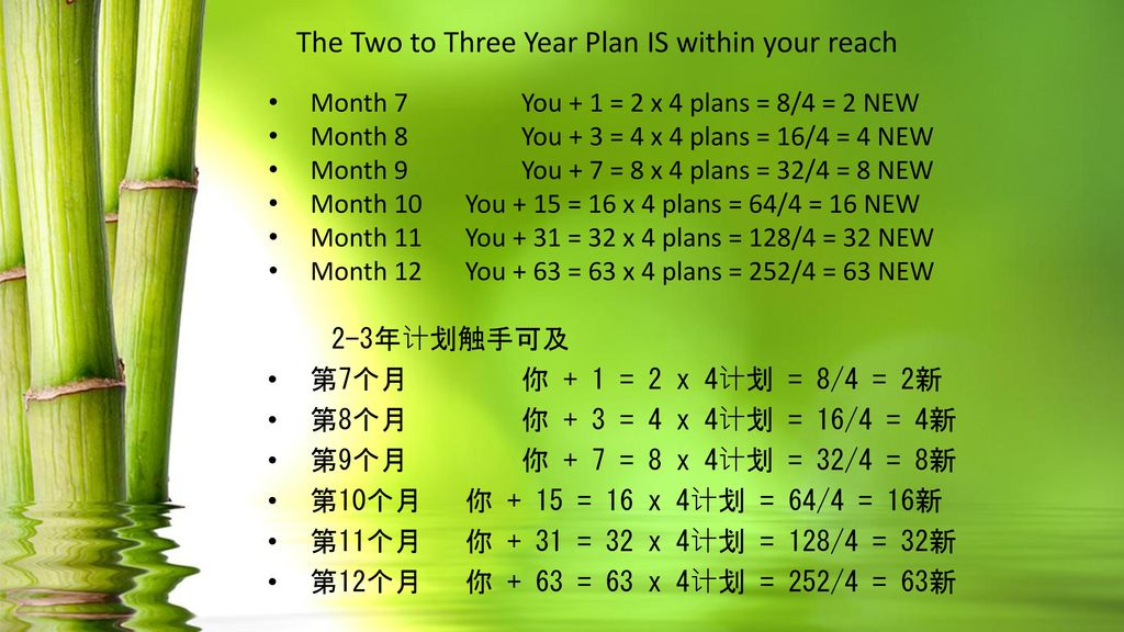The Two to Three Year Plan IS within your reach