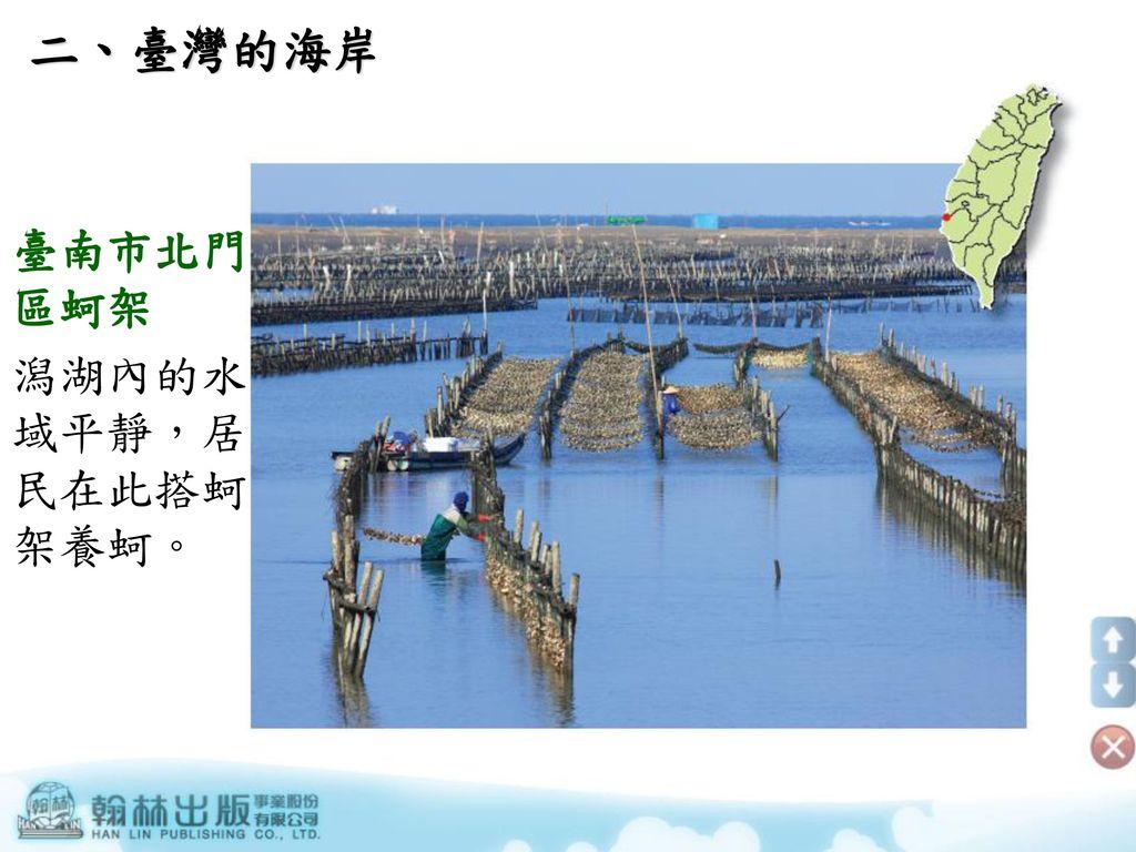 二、臺灣的海岸 臺南市北門區蚵架 潟湖內的水域平靜,居民在此搭蚵架養蚵。