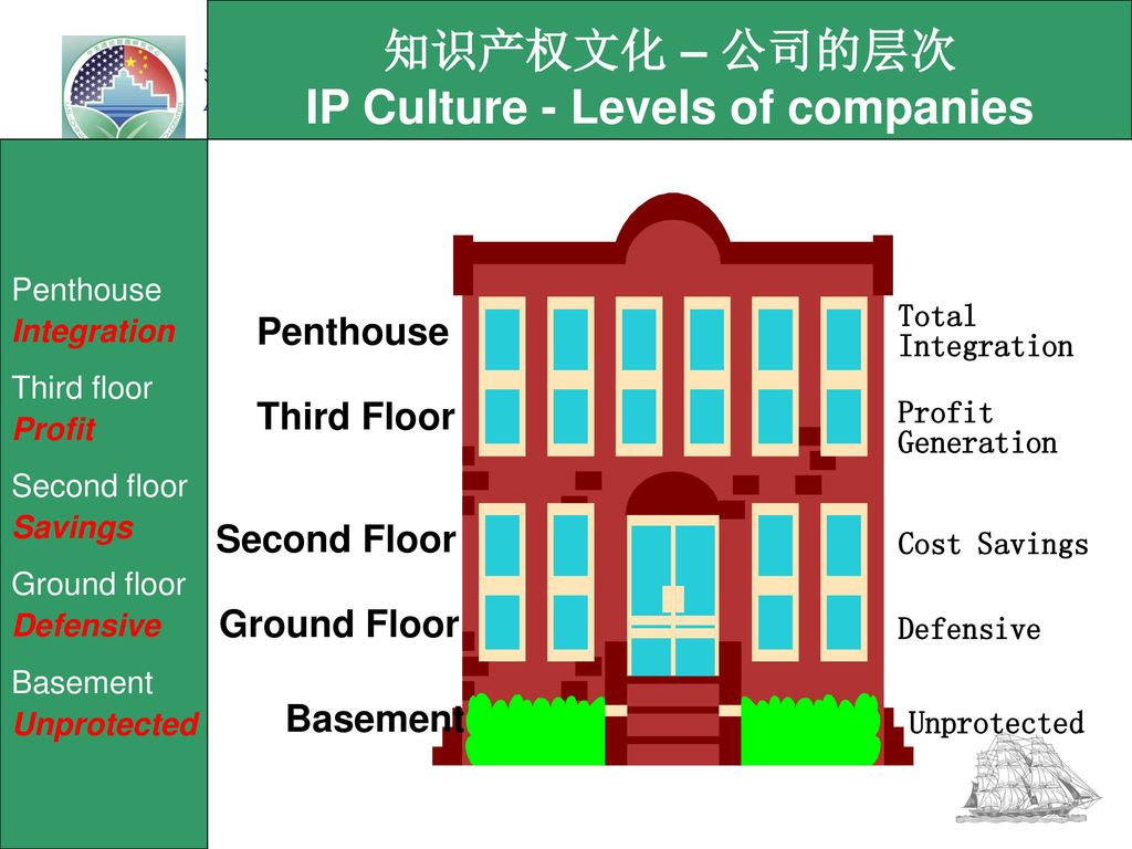 IP Culture - Levels of companies