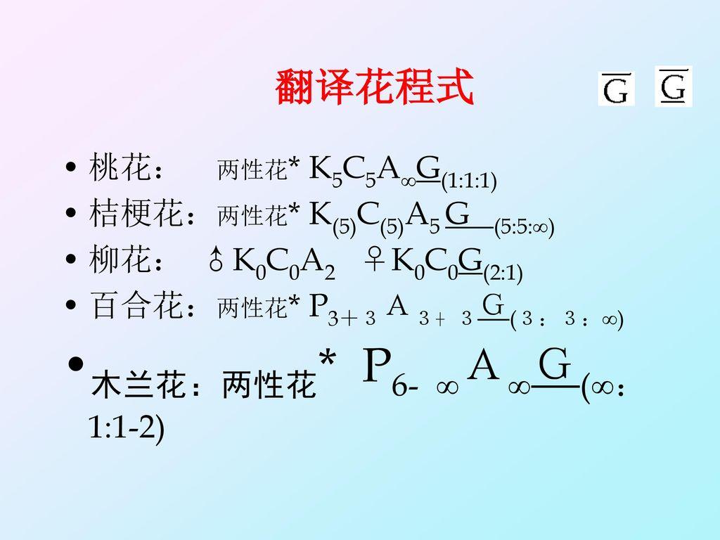 木兰花:两性花* P6- ∞A∞G(∞:1:1-2)