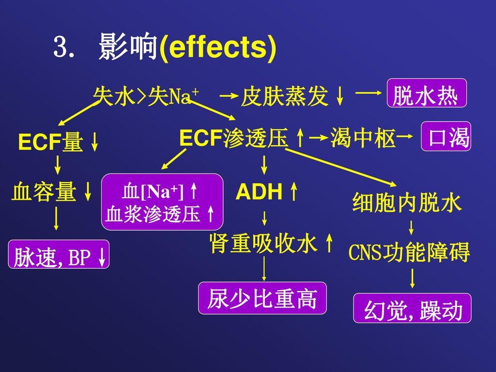3. 影响(effects) 失水>失Na+ →皮肤蒸发↓ 脱水热 ECF量↓ ECF渗透压↑ →渴中枢 口渴 脉速,BP↓