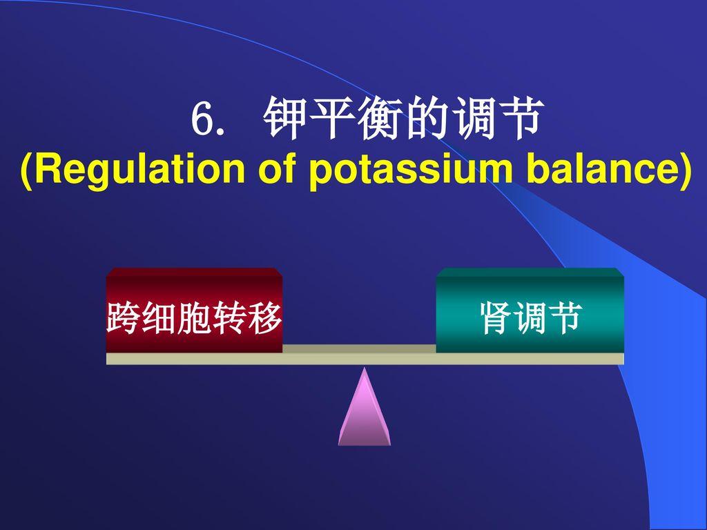 6. 钾平衡的调节 (Regulation of potassium balance)