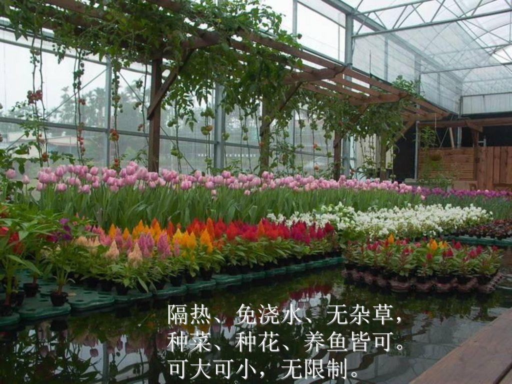 隔热、免浇水、无杂草, 种菜、种花、养鱼皆可。 可大可小,无限制。
