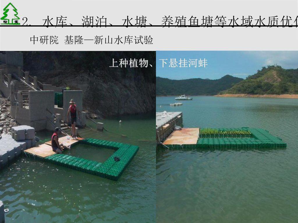 2. 水库、湖泊、水塘、养殖鱼塘等水域水质优化