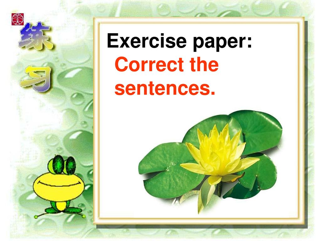 Exercise paper: Correct the sentences.