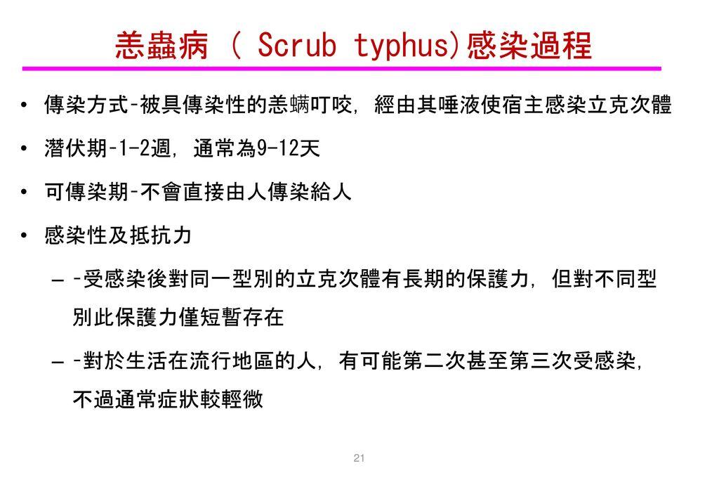 恙蟲病 ( Scrub typhus)感染過程