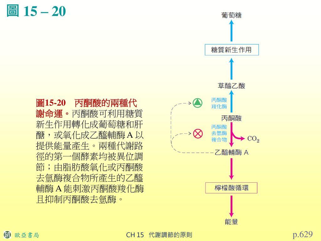 生 物 化 學 【第5版】 CH15 代謝調節的原則.