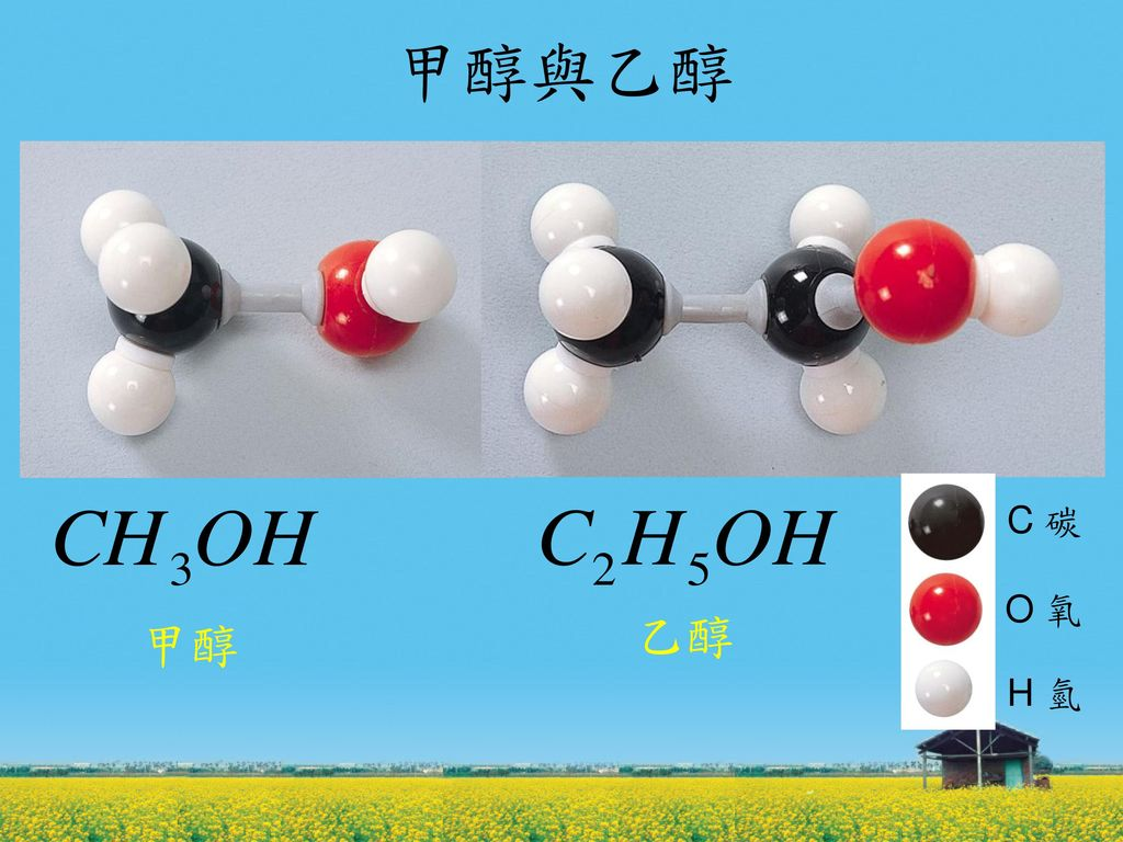 甲醇與乙醇 C 碳 O 氧 H 氫 乙醇 甲醇