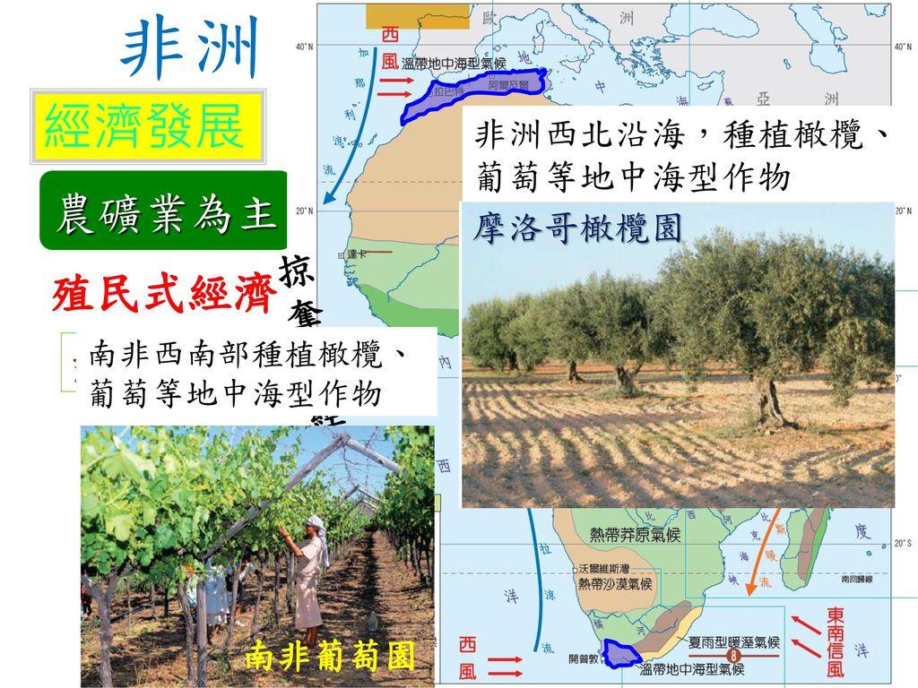 非洲 經濟發展 農礦業為主 殖民式經濟 掠奪式經濟 熱帶栽培業 非洲西北沿海,種植橄欖、葡萄等地中海型作物 摩洛哥橄欖園 南非葡萄園