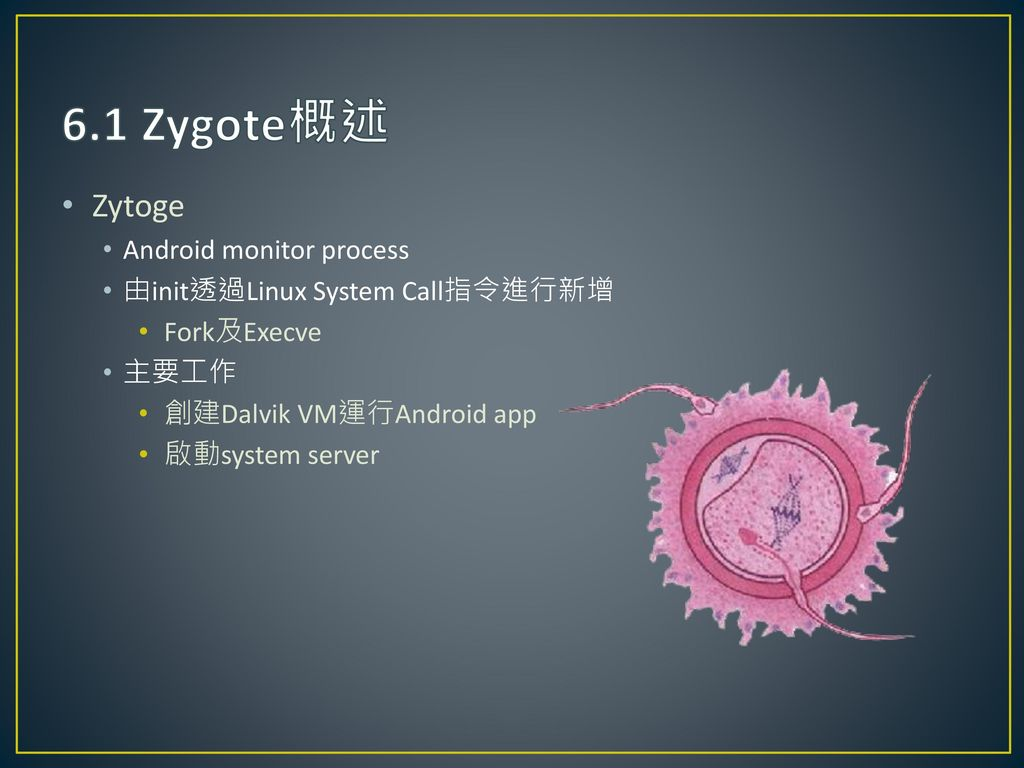 6.1 Zygote概述 Zytoge Android monitor process