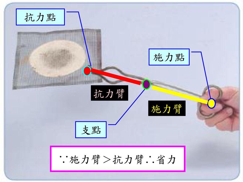 抗力點 施力點 抗力臂 施力臂 支點 ∵施力臂>抗力臂∴省力