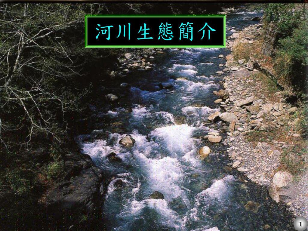 河川生態簡介 1
