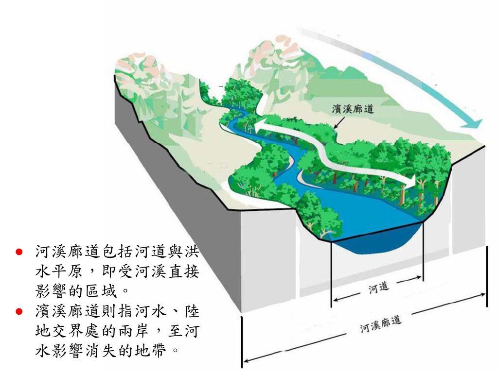 河溪廊道包括河道與洪水平原,即受河溪直接影響的區域。