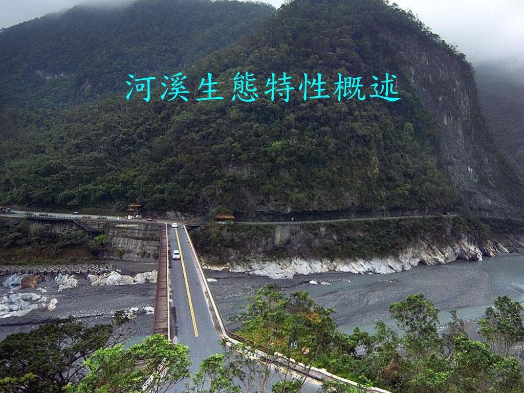 河溪生態特性概述