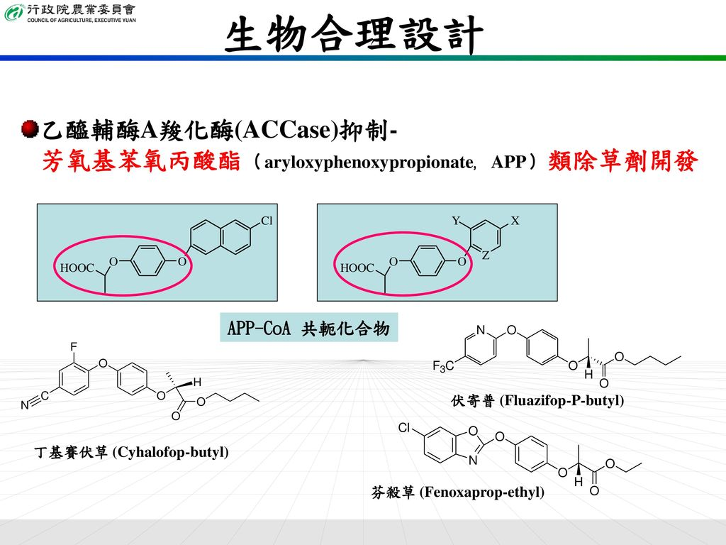 生物合理設計 乙醯輔酶A羧化酶(ACCase)抑制-