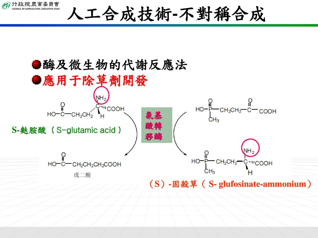 人工合成技術-不對稱合成 酶及微生物的代謝反應法 應用于除草劑開發 氨基酸轉移酶 S-麩胺酸( S-glutamic acid )
