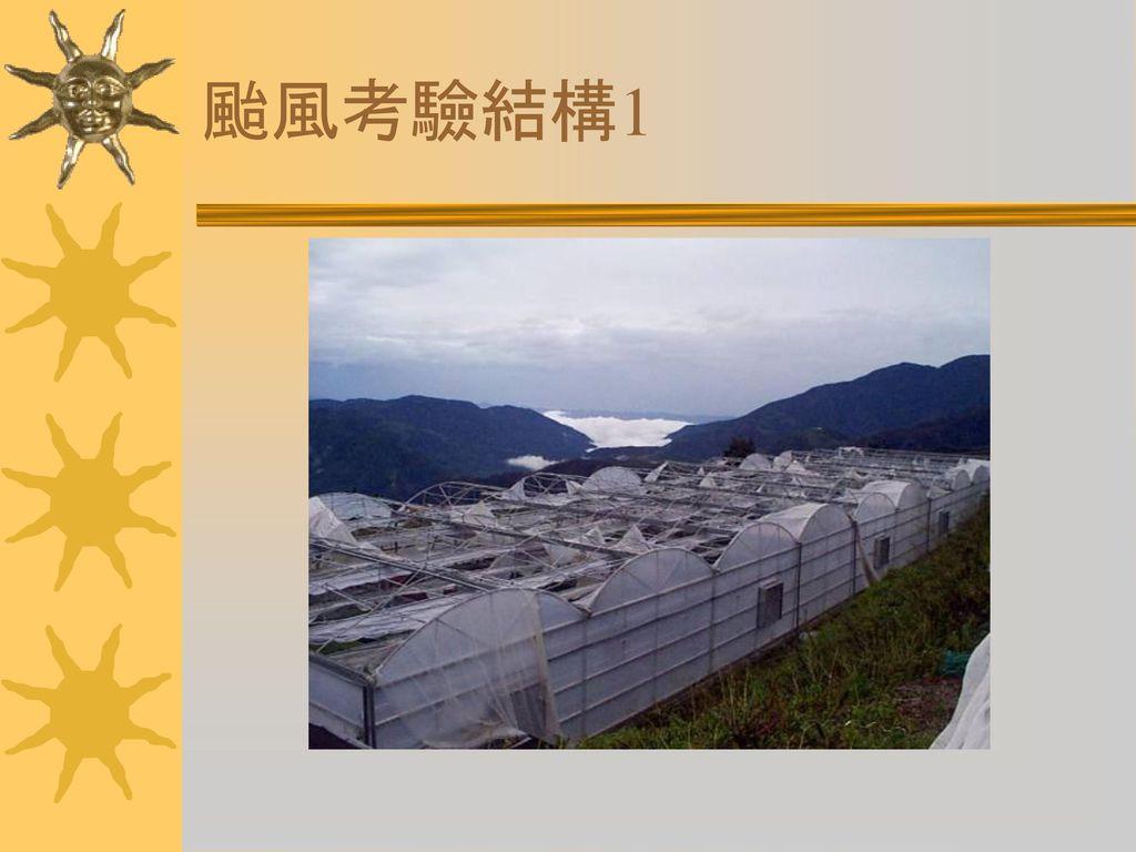 颱風考驗結構1