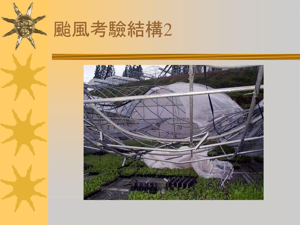 颱風考驗結構2