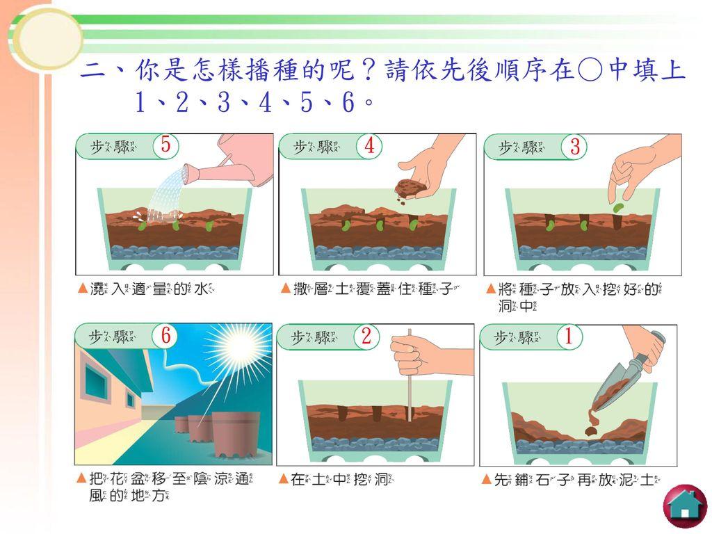 二、你是怎樣播種的呢?請依先後順序在○中填上 1、2、3、4、5、6。