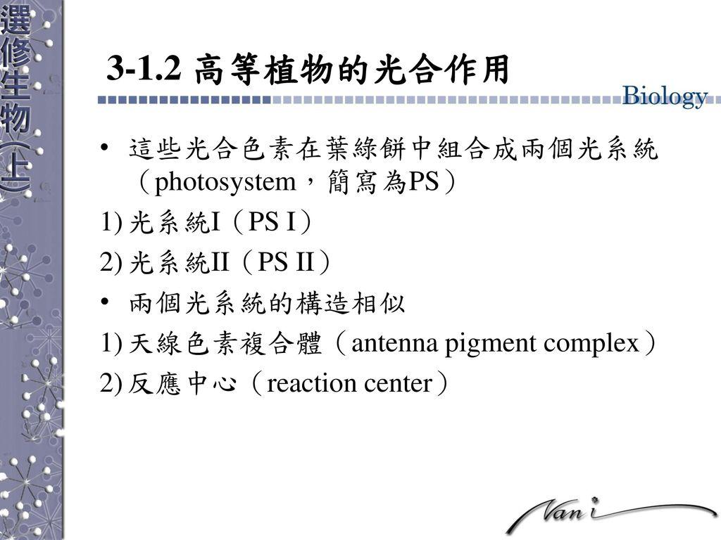 3-1.2 高等植物的光合作用 這些光合色素在葉綠餅中組合成兩個光系統(photosystem,簡寫為PS) 光系統I(PS I)
