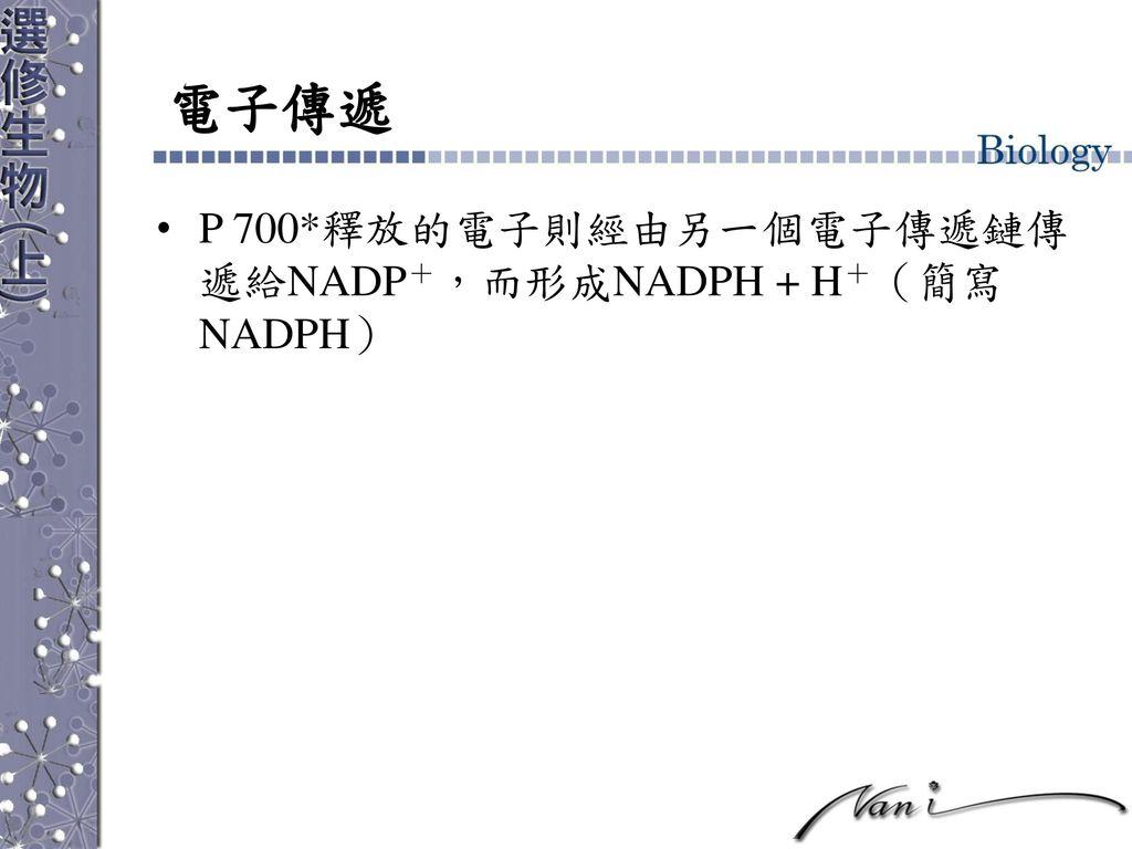 電子傳遞 P 700*釋放的電子則經由另一個電子傳遞鏈傳遞給NADP+,而形成NADPH + H+(簡寫NADPH)