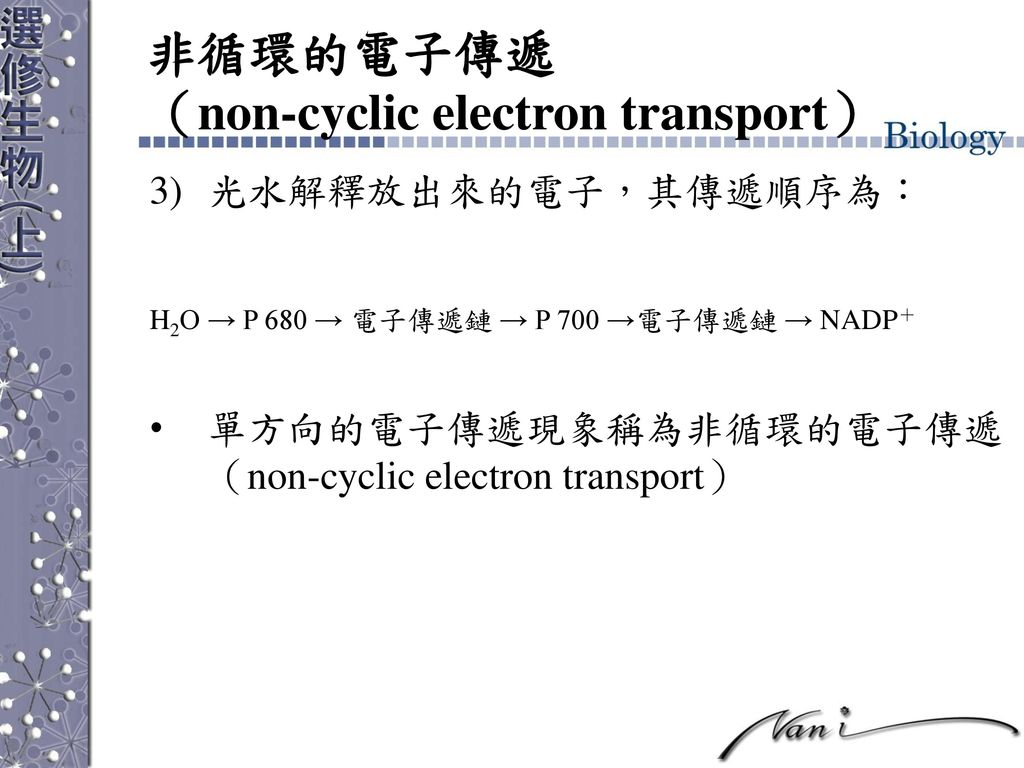 非循環的電子傳遞 (non-cyclic electron transport)