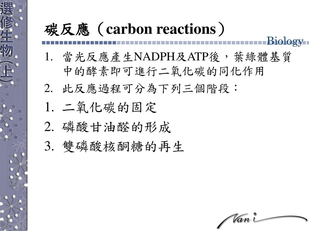 碳反應(carbon reactions)