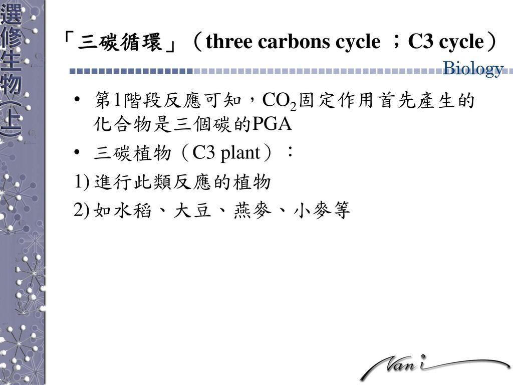 「三碳循環」(three carbons cycle ;C3 cycle)