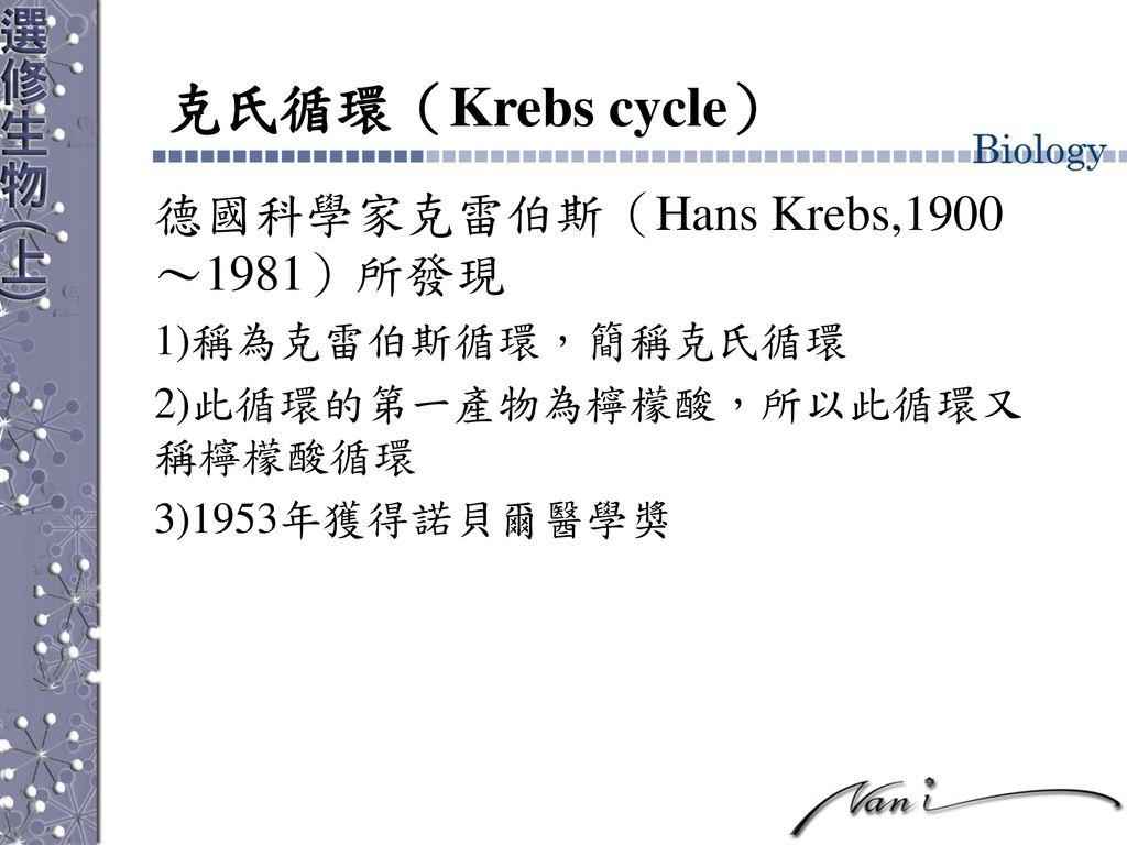 克氏循環(Krebs cycle) 德國科學家克雷伯斯(Hans Krebs,1900~1981)所發現 稱為克雷伯斯循環,簡稱克氏循環