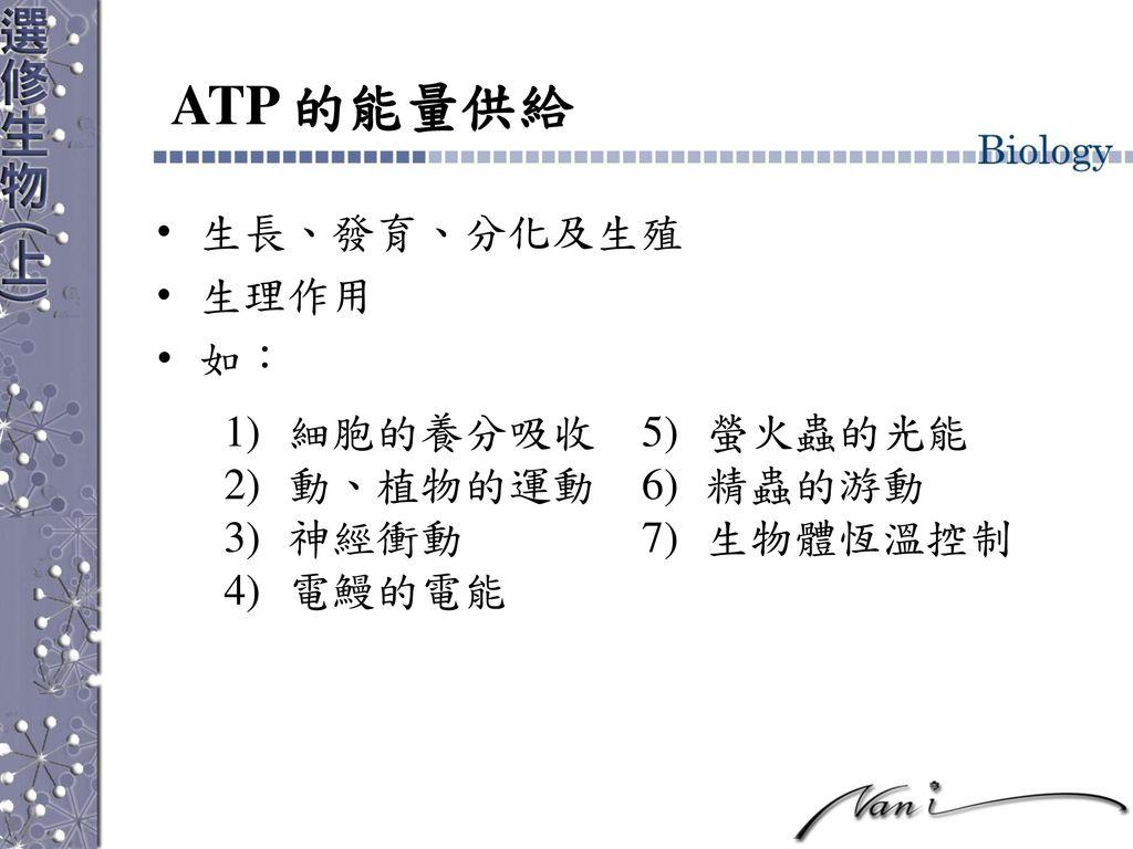 ATP 的能量供給 生長、發育、分化及生殖 生理作用 如: 細胞的養分吸收 螢火蟲的光能 動、植物的運動 精蟲的游動 神經衝動
