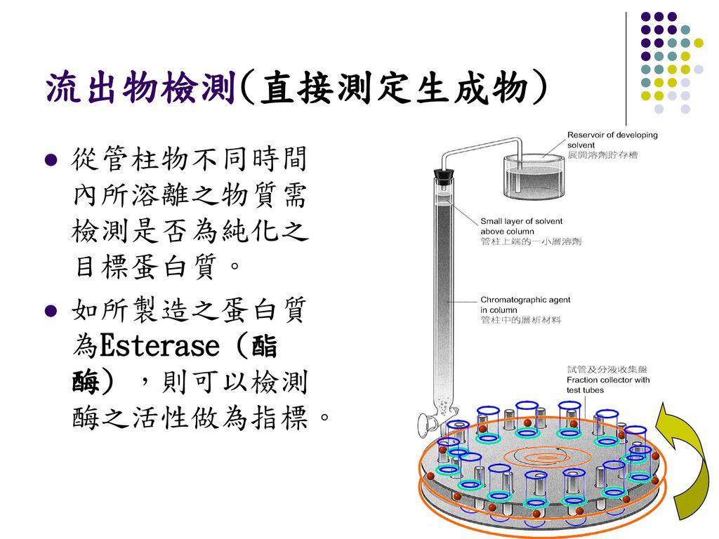 流出物檢測(直接測定生成物) 從管柱物不同時間內所溶離之物質需檢測是否為純化之目標蛋白質。