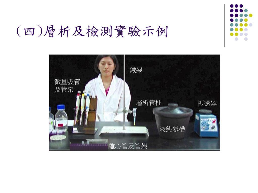 (四)層析及檢測實驗示例 鐵架 微量吸管及管架 層析管柱 振盪器 液態氮槽 離心管及管架
