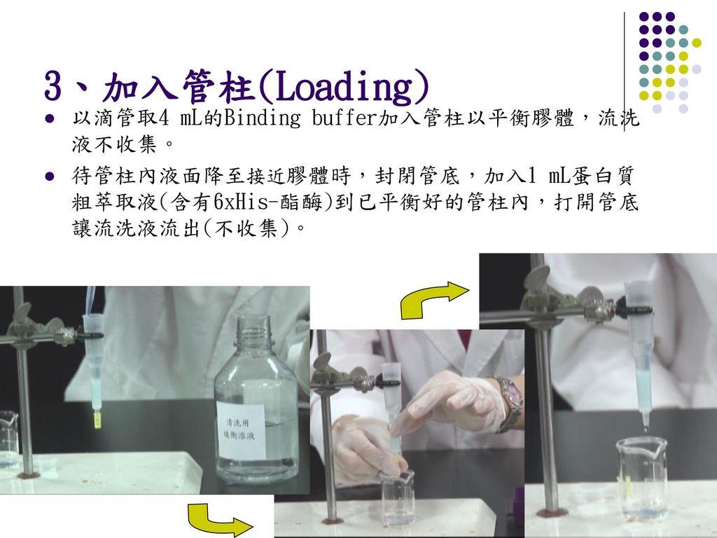 3、加入管柱(Loading) 以滴管取4 mL的Binding buffer加入管柱以平衡膠體,流洗液不收集。