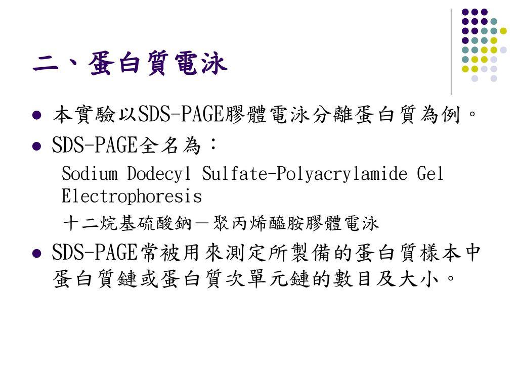 二、蛋白質電泳 本實驗以SDS-PAGE膠體電泳分離蛋白質為例。 SDS-PAGE全名為: