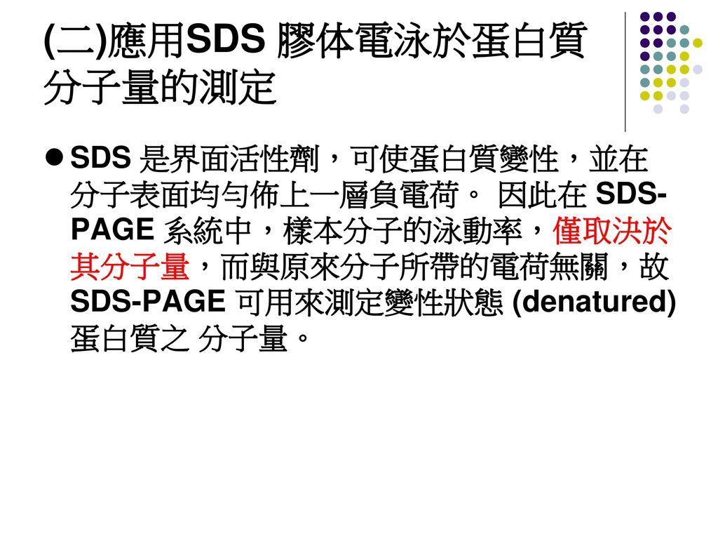 (二)應用SDS 膠体電泳於蛋白質分子量的測定